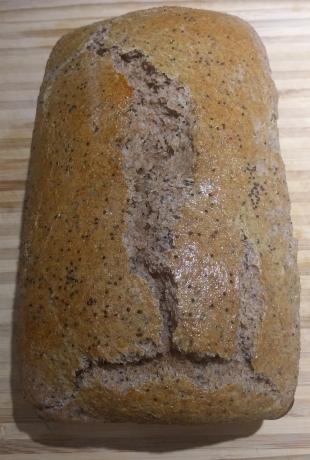 Tecate Ranch Whole Wheat Bread